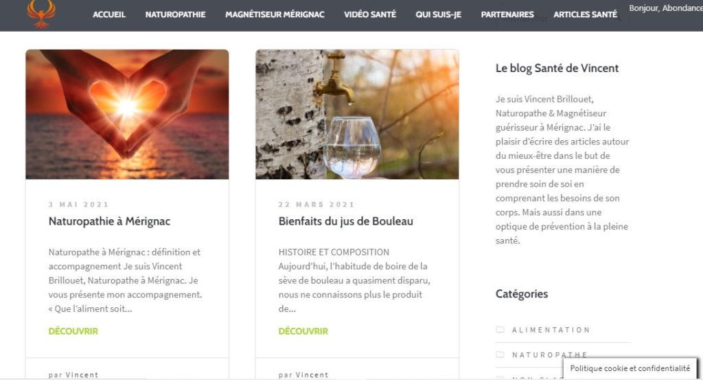 creation blog pour naturopathe